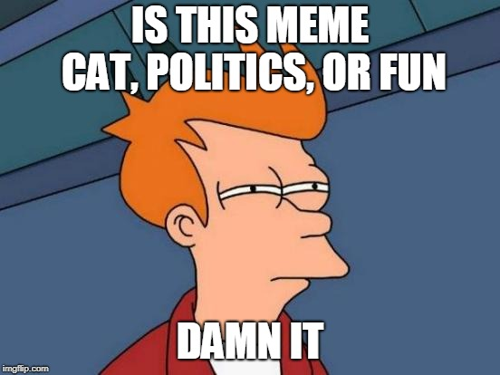 IS THIS MEME CAT, POLITICS, OR FUN DAMN IT | image tagged in memes,futurama fry | made w/ Imgflip meme maker