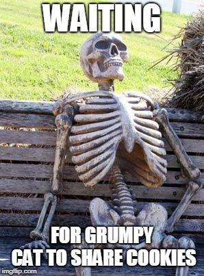 Waiting Skeleton Meme | WAITING FOR GRUMPY CAT TO SHARE COOKIES | image tagged in memes,waiting skeleton | made w/ Imgflip meme maker