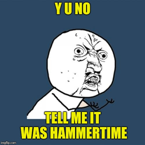 Y U No Meme | Y U NO TELL ME IT WAS HAMMERTIME | image tagged in memes,y u no | made w/ Imgflip meme maker