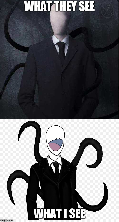 I just don't see him as very scary | WHAT THEY SEE WHAT I SEE | image tagged in slenderman | made w/ Imgflip meme maker