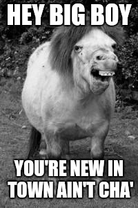 ugly horse | HEY BIG BOY YOU'RE NEW IN TOWN AIN'T CHA' | image tagged in ugly horse | made w/ Imgflip meme maker
