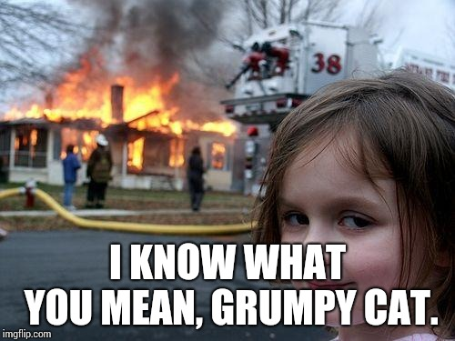 Disaster Girl Meme | I KNOW WHAT YOU MEAN, GRUMPY CAT. | image tagged in memes,disaster girl | made w/ Imgflip meme maker