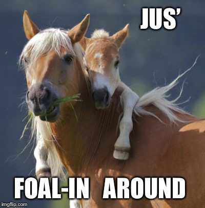 Foal Of Mine Meme | JUS' FOAL-IN   AROUND | image tagged in memes,foal of mine | made w/ Imgflip meme maker