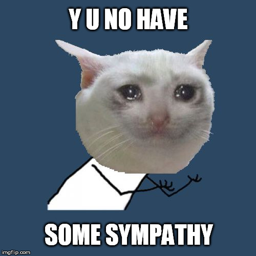 Y U NO HAVE SOME SYMPATHY | made w/ Imgflip meme maker