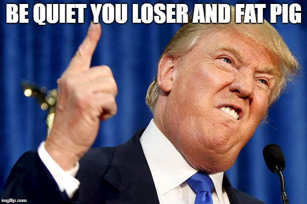 Donald Trump | BE QUIET YOU LOSER AND FAT PIG | image tagged in donald trump | made w/ Imgflip meme maker