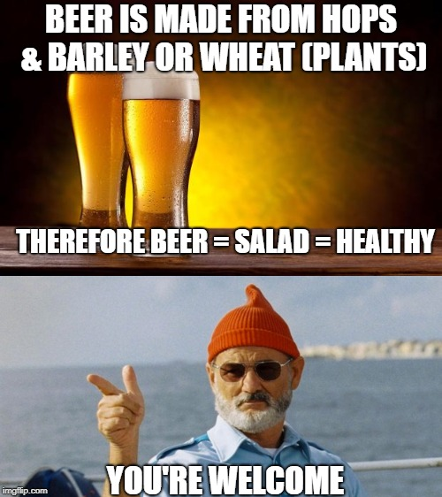 Beer is Salad | BEER IS MADE FROM HOPS & BARLEY OR WHEAT (PLANTS) THEREFORE BEER = SALAD = HEALTHY YOU'RE WELCOME | image tagged in beer,salad,healthy | made w/ Imgflip meme maker
