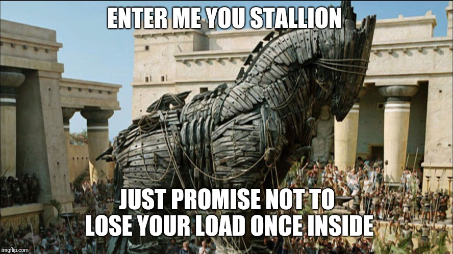 ENTER ME YOU STALLION JUST PROMISE NOT TO LOSE YOUR LOAD ONCE INSIDE | made w/ Imgflip meme maker
