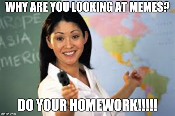 WHY ARE YOU LOOKING AT MEMES? DO YOUR HOMEWORK!!!!! | image tagged in hot teacher with gun | made w/ Imgflip meme maker