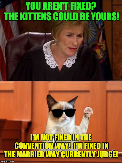 There's a difference slightly... | YOU AREN'T FIXED? THE KITTENS COULD BE YOURS! I'M NOT FIXED IN THE CONVENTION WAY!  I'M FIXED IN THE MARRIED WAY CURRENTLY JUDGE! | image tagged in judge judy and the cat,marriage,kitten | made w/ Imgflip meme maker