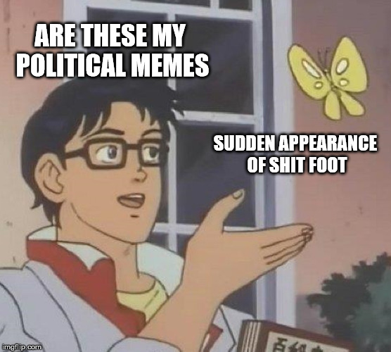 Is This A Pigeon Meme | ARE THESE MY POLITICAL MEMES SUDDEN APPEARANCE OF SHIT FOOT | image tagged in memes,is this a pigeon | made w/ Imgflip meme maker
