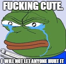 rare pepe | F**KING CUTE. I  WILL NOT LET ANYONE HURT IT | image tagged in rare pepe | made w/ Imgflip meme maker