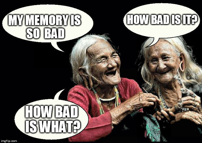 How Bad Is What? | MY MEMORY IS SO  BAD HOW BAD IS IT? HOW BAD IS WHAT? | image tagged in old ladies,funny,memes,bad pun dog,bad luck brian,grandma finds the internet | made w/ Imgflip meme maker
