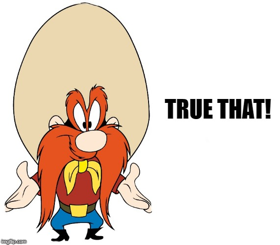 yosemite sam | TRUE THAT! | image tagged in yosemite sam | made w/ Imgflip meme maker