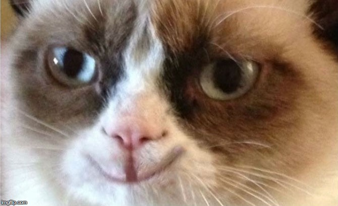 Grumpy Cat happy | . | image tagged in grumpy cat happy | made w/ Imgflip meme maker