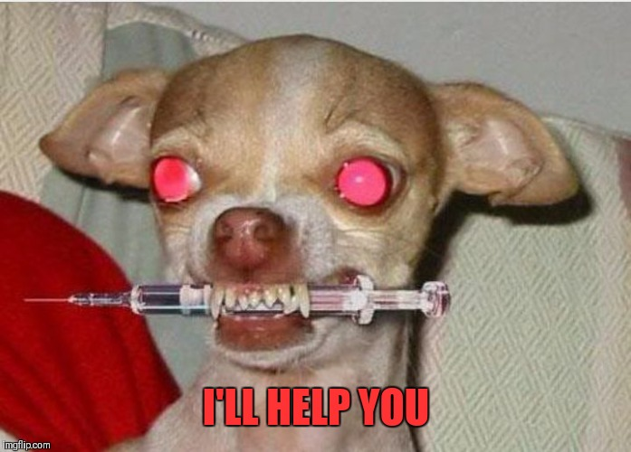 Drug dog | I'LL HELP YOU | image tagged in drug dog | made w/ Imgflip meme maker