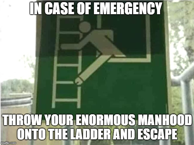escape plan  | IN CASE OF EMERGENCY THROW YOUR ENORMOUS MANHOOD ONTO THE LADDER AND ESCAPE | image tagged in in case of emergency,safety first | made w/ Imgflip meme maker
