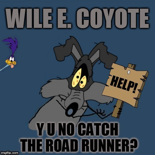 Y U NOvember, a socrates and punman21 event |  WILE E. COYOTE; HELP! Y U NO CATCH THE ROAD RUNNER? | image tagged in memes,y u no,y u november,wile e coyote,road runner,looney tunes | made w/ Imgflip meme maker