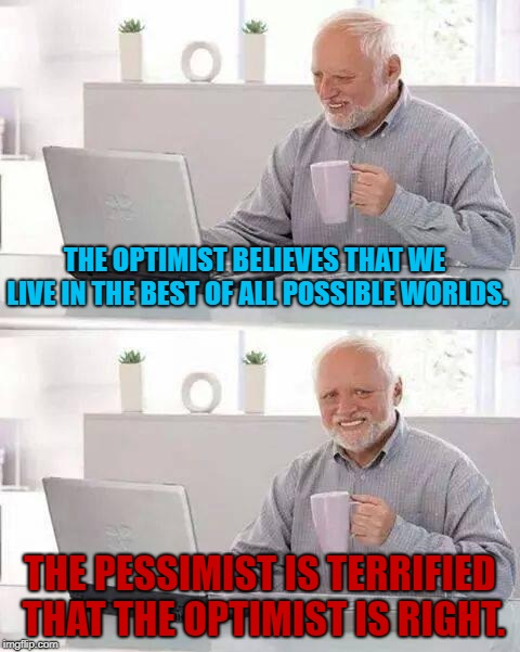 A matter of perspective. | THE OPTIMIST BELIEVES THAT WE LIVE IN THE BEST OF ALL POSSIBLE WORLDS. THE PESSIMIST IS TERRIFIED THAT THE OPTIMIST IS RIGHT. | image tagged in memes,hide the pain harold,optimism,pessimism | made w/ Imgflip meme maker