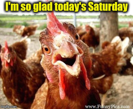 Chicken | I'm so glad today's Saturday | image tagged in chicken | made w/ Imgflip meme maker