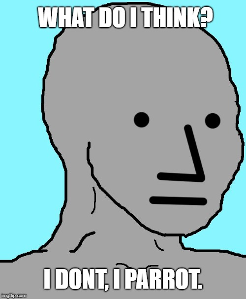 Liberals in a nutshell | WHAT DO I THINK? I DONT, I PARROT. | image tagged in memes,npc,liberal logic,stupid liberals | made w/ Imgflip meme maker