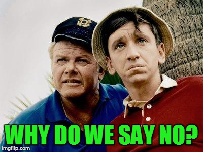 Gilligans Island | WHY DO WE SAY NO? | image tagged in gilligans island | made w/ Imgflip meme maker