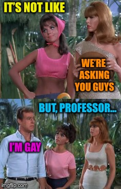 IT'S NOT LIKE I'M GAY WE'RE ASKING YOU GUYS BUT, PROFESSOR... | made w/ Imgflip meme maker