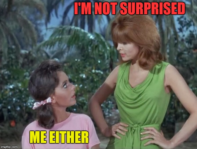 Mary Ann and Ginger | I'M NOT SURPRISED ME EITHER | image tagged in mary ann and ginger | made w/ Imgflip meme maker