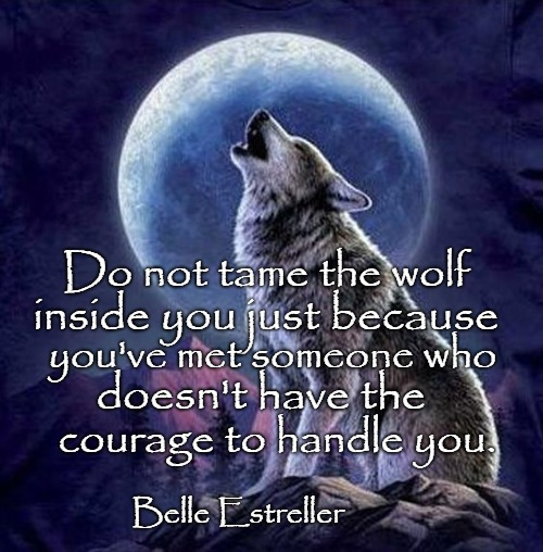 Wisdom From The Wolf | Do not tame the wolf Belle Estreller inside you just because you've met someone who doesn't have the courage to handle you. | image tagged in animals,wolf,wolves,indians,native amerixan,native americans | made w/ Imgflip meme maker