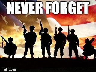veterans day | NEVER FORGET | image tagged in veterans day | made w/ Imgflip meme maker