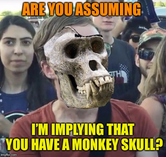 ARE YOU ASSUMING I'M IMPLYING THAT YOU HAVE A MONKEY SKULL? | made w/ Imgflip meme maker