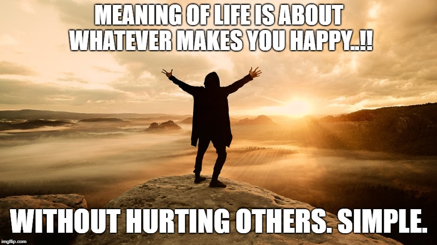 love life | MEANING OF LIFE IS ABOUT WHATEVER MAKES YOU HAPPY..!! WITHOUT HURTING OTHERS. SIMPLE. | image tagged in life | made w/ Imgflip meme maker