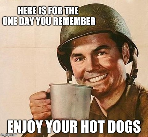 Thank you for supporting Veteran's one day a year.  | HERE IS FOR THE ONE DAY YOU REMEMBER ENJOY YOUR HOT DOGS | image tagged in veteran nation,veterans day,you are all welcome,ungrateful twits | made w/ Imgflip meme maker