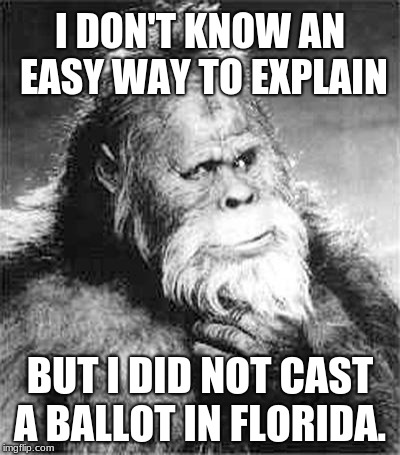 Florida, world champions in voter fraud. | I DON'T KNOW AN EASY WAY TO EXPLAIN BUT I DID NOT CAST A BALLOT IN FLORIDA. | image tagged in bigfoot,voter fraud,florida,midterms | made w/ Imgflip meme maker