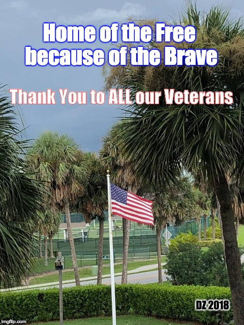 Veterans Day |  Home of the Free because of the Brave; Thank You to ALL our Veterans; DZ 2018 | image tagged in veterans day,flag,veterans,freedom,thank you,brave | made w/ Imgflip meme maker