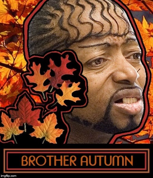 Brother Autumn Leaves | image tagged in pimp | made w/ Imgflip meme maker