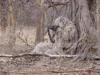 Ghillie suit Blank Template , Imgflip