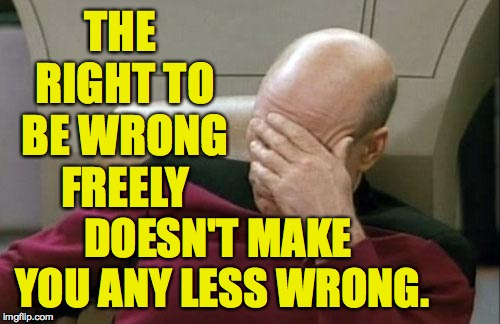 When you mistake your thinking for your freedom to speak it. | THE RIGHT TO BE WRONG FREELY DOESN'T MAKE YOU ANY LESS WRONG. | image tagged in memes,captain picard facepalm,freedom of speech | made w/ Imgflip meme maker
