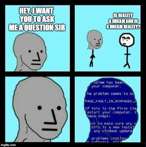that guy has a point.... | HEY, I WANT YOU TO ASK ME A QUESTION SIR IS REALITY A DREAM AND IS A DREAM REALITY? | image tagged in npc error | made w/ Imgflip meme maker