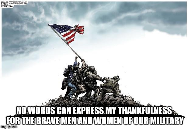 Veterans Day | NO WORDS CAN EXPRESS MY THANKFULNESS FOR THE BRAVE MEN AND WOMEN OF OUR MILITARY | image tagged in veterans day | made w/ Imgflip meme maker