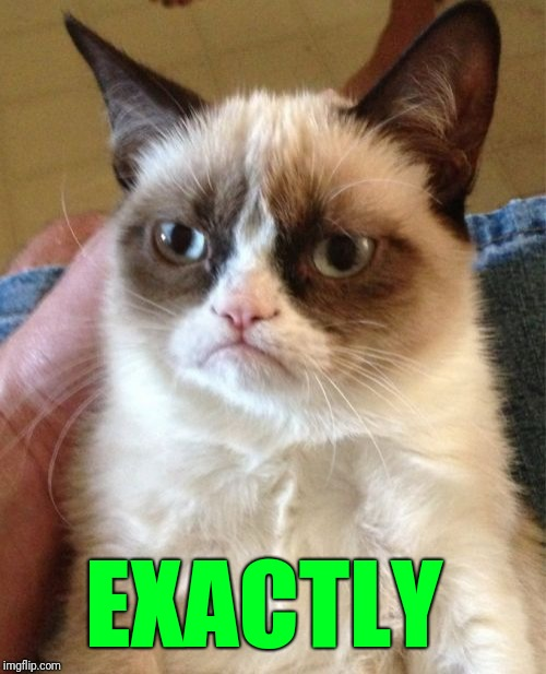 Grumpy Cat Meme | EXACTLY | image tagged in memes,grumpy cat | made w/ Imgflip meme maker