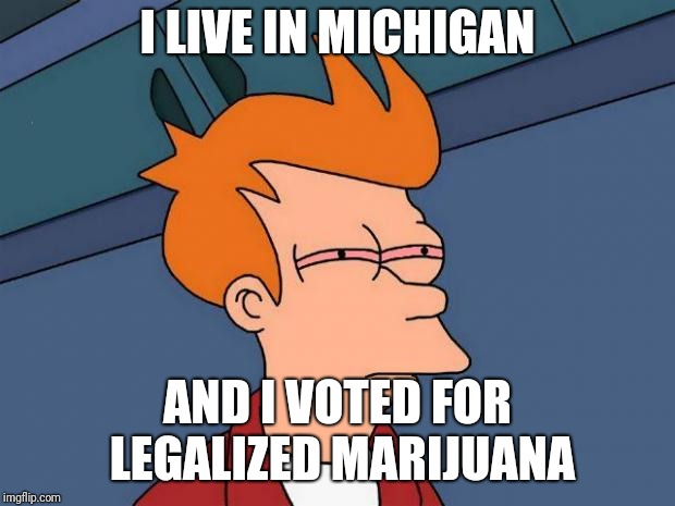 stoned fry | I LIVE IN MICHIGAN AND I VOTED FOR LEGALIZED MARIJUANA | image tagged in stoned fry | made w/ Imgflip meme maker