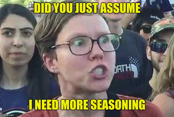 Triggered Liberal | DID YOU JUST ASSUME I NEED MORE SEASONING | image tagged in triggered liberal | made w/ Imgflip meme maker