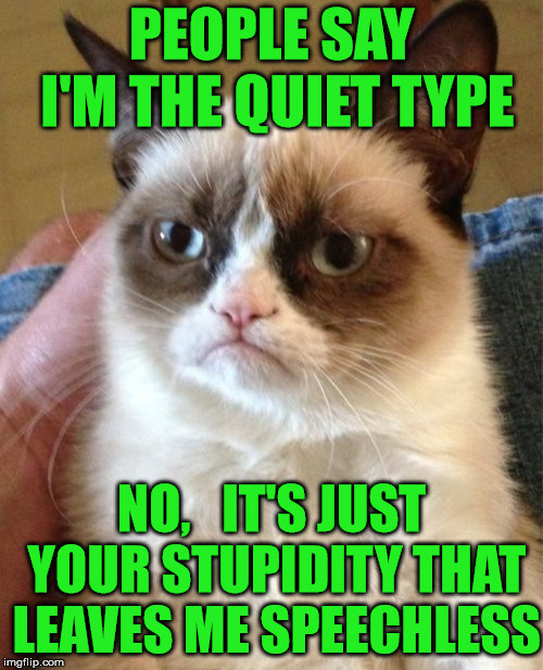 Grumpy Cat | PEOPLE SAY I'M THE QUIET TYPE NO,   IT'S JUST YOUR STUPIDITY THAT LEAVES ME SPEECHLESS | image tagged in memes,grumpy cat,stupidity,quiet,speechless | made w/ Imgflip meme maker