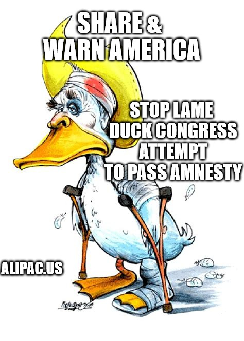 Warn America: Stop Lame Duck Congress attempt to pass Amnesty for illegals | SHARE & WARN AMERICA STOP LAME DUCK CONGRESS ATTEMPT TO PASS AMNESTY ALIPAC.US | image tagged in lame duck,congress,amnesty,illegal immigration,alipac | made w/ Imgflip meme maker