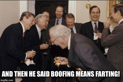 Boofing | AND THEN HE SAID BOOFING MEANS FARTING! | image tagged in laughing men in suits,brett kavanaugh,boofing,fart,memes,presidents | made w/ Imgflip meme maker