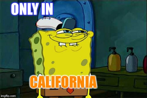 Don't You Squidward Meme | ONLY IN CALIFORNIA | image tagged in memes,dont you squidward | made w/ Imgflip meme maker