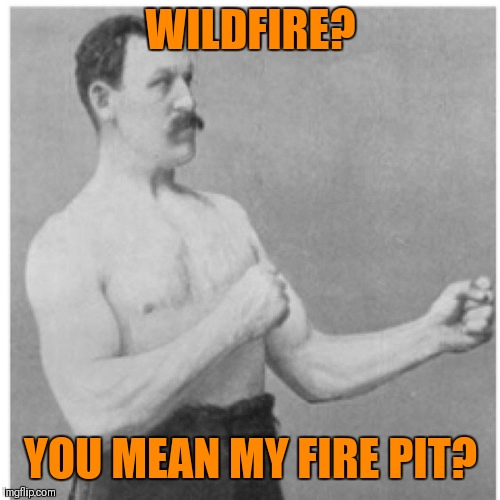 Overly Manly Man Meme | WILDFIRE? YOU MEAN MY FIRE PIT? | image tagged in memes,overly manly man | made w/ Imgflip meme maker