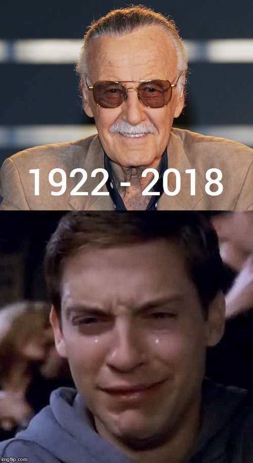 Spiderman's Reaction to Stan Lee's Death | image tagged in stan lee,peter parker cry | made w/ Imgflip meme maker