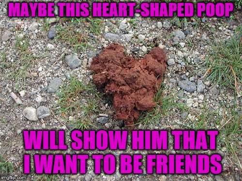 MAYBE THIS HEART-SHAPED POOP WILL SHOW HIM THAT I WANT TO BE FRIENDS | made w/ Imgflip meme maker