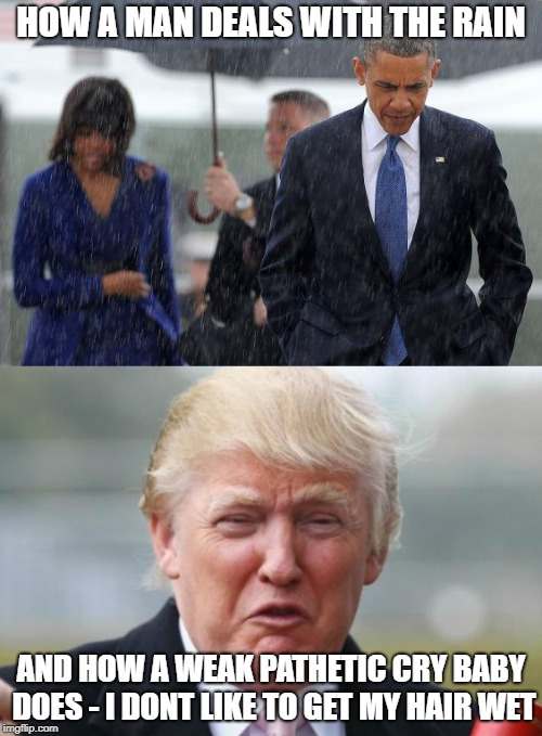 Whaa its raining cant honor the vets | HOW A MAN DEALS WITH THE RAIN AND HOW A WEAK PATHETIC CRY BABY DOES - I DONT LIKE TO GET MY HAIR WET | image tagged in memes,politics,pathetic,trump,maga | made w/ Imgflip meme maker